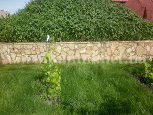 песчаник на подпорной стенке